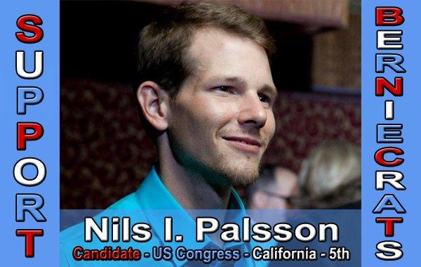 Palsson, Nils - US Congress - 5th District