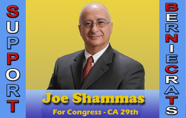 Shammas, Joe - US Congress - 29th District